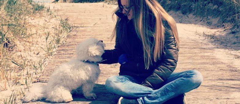 Erfahrungsbericht Dogsharing