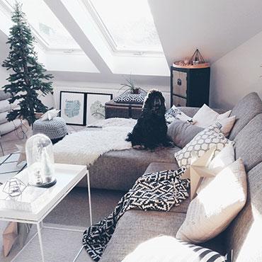 weihnachten mit hund tierisch wohnen. Black Bedroom Furniture Sets. Home Design Ideas