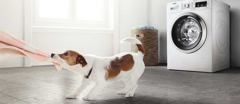 Hunde und Hygiene mit Baby