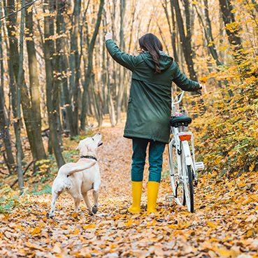 Mit Fahrrad und Hund unterwegs