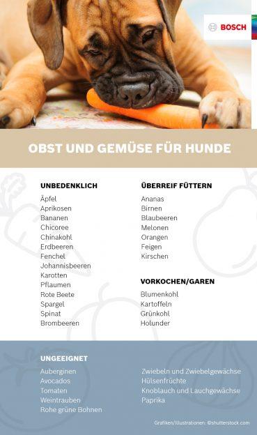 Infografik über Obst und Gemüse für Hunde